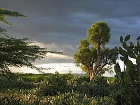 Madagascar_ Public Health and Environment Project 2008 onVimeo